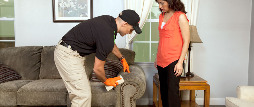 La Verne, CA carpet upholstery cleaning